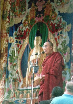 hhdl with a thangka